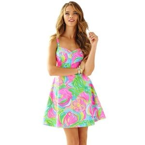NWOT Lilly Pulitzer Willow Dress